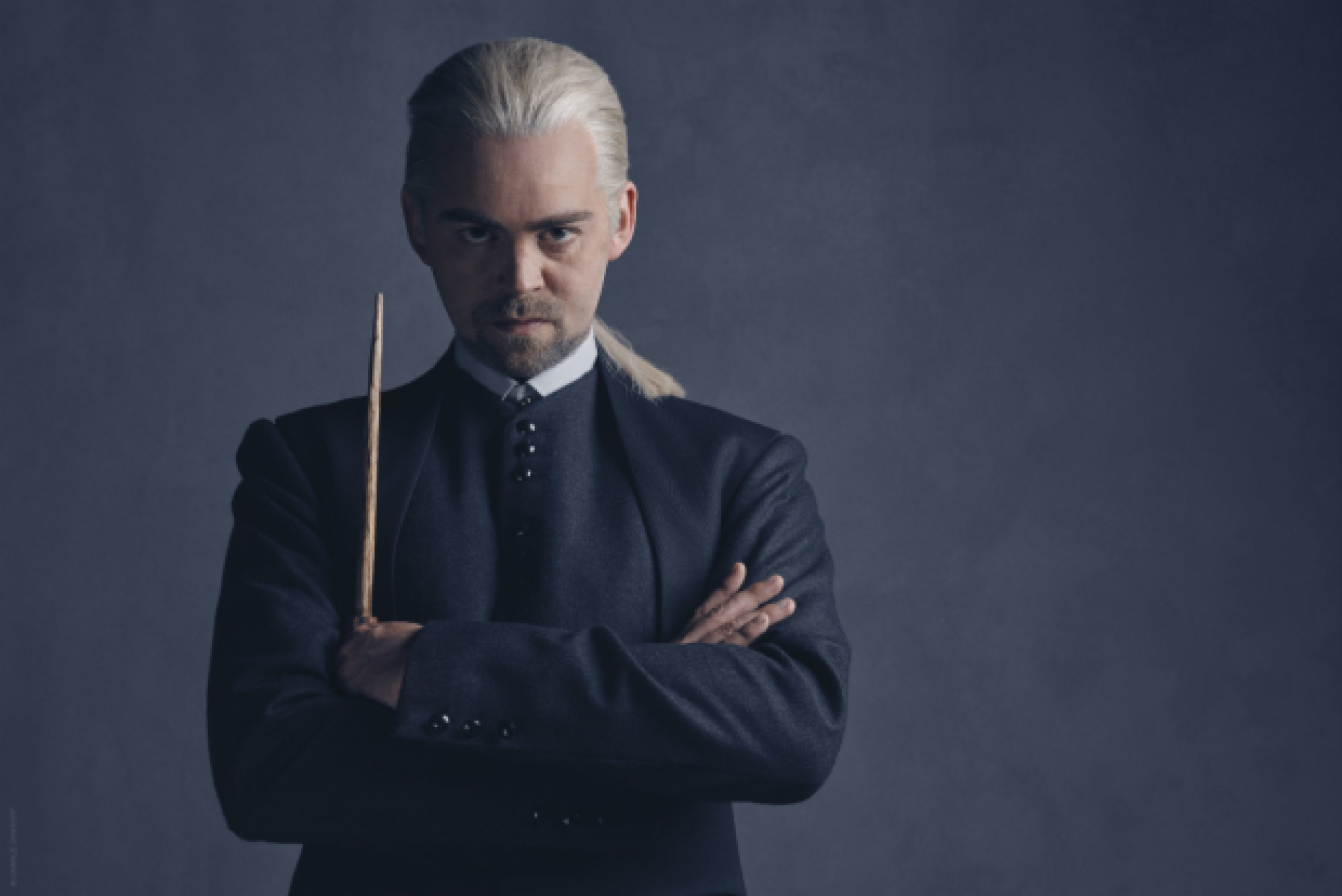 Draco Malfoy and Scorpius Malfoy cast in Harry Potter and